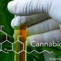 Is Cannabidiol an answer to improve seizure control?